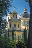 Catedral de los santos Peter y Paul backside imagenes de archivo