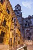 Catedral de Málaga en la noche foto de archivo libre de regalías