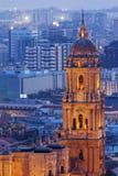 Catedral de Málaga en la noche imagen de archivo libre de regalías
