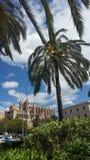 Catedral de Majorca Imagen de archivo