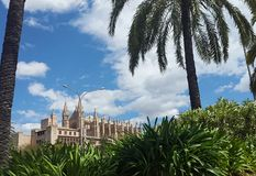 Catedral de Majorca Fotografia de Stock Royalty Free
