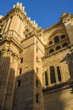 Catedral de Malaga Arkivfoton
