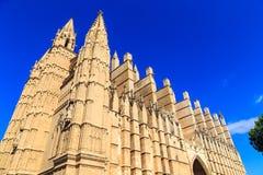 Catedral de Mallorca Royaltyfria Bilder