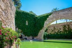 Catedral de Mallorca, Palma de Mallorca, Espanha Imagens de Stock Royalty Free