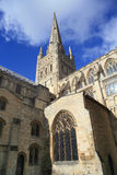 Catedral de Norwich Imagem de Stock Royalty Free