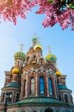 Catedral de nosso salvador no sangue Spilled em St Petersburg, Rússia na noite da mola fotos de stock royalty free