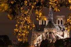 Catedral de Notre Dame de Paris na noite Fotografia de Stock