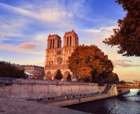 Catedral de Notre-Dame en caída por la noche temprano Imágenes de archivo libres de regalías