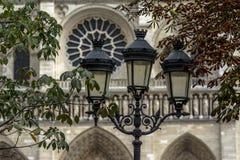 Catedral de Notre Dame en París Imagen de archivo