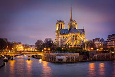 Catedral de Notre Dame, Ile de La Menção, Paris, França Imagens de Stock Royalty Free