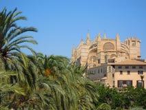 Catedral de Palma Fotografia de Stock Royalty Free