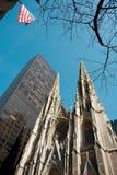 Catedral de Patrick de Saint Fotografia de Stock