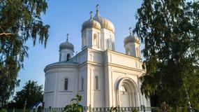 Catedral de piedra blanca bajo luz del sol de oro por una tarde clara del verano, ciudad de Rzhev, Rusia de la ascensión Fotografía de archivo libre de regalías