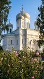 Catedral de piedra blanca bajo luz del sol de oro por una tarde clara del verano, ciudad de Rzhev, Rusia de la ascensión Foto de archivo
