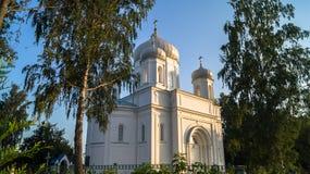 Catedral de piedra blanca bajo luz del sol de oro por una tarde clara del verano, ciudad de Rzhev, Rusia de la ascensión Fotografía de archivo