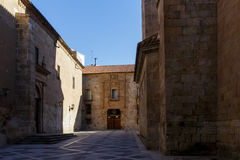 Catedral de Salamanca Imagem de Stock