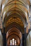 Catedral de Salisbúria fotos de stock royalty free