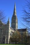 Catedral de Salisbúria no outono imagens de stock royalty free