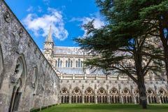 Catedral de Salisbúria, Wiltshire, Inglaterra, Reino Unido fotos de stock