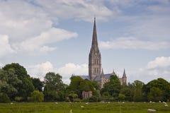 Catedral de Salisbury Fotos de archivo libres de regalías