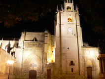 Catedral de San Antolin, Palencia ( Spain ) Royalty Free Stock Photography