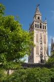 Catedral DE Santa MarÃa DE La Sede, Sevilla, Andalucia, Spanje Stock Afbeeldingen