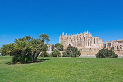 Catedral de Seu do La e espaço da grama verde Imagem de Stock