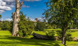 A catedral de St Albans, Reino Unido no verão foto de stock