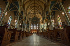 Catedral de St John o batista--Savana Fotografia de Stock Royalty Free