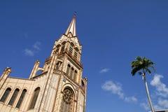 Catedral de St Louis Foto de Stock Royalty Free