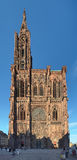 Catedral de Strasbourg, França fotos de stock