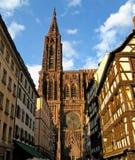 Catedral de Strasbourg na luz solar da noite Fotografia de Stock Royalty Free