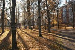 Catedral de Tartu e o parque no monte de Toome imagem de stock royalty free