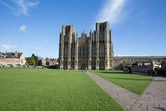 Catedral de Wells en tiempo hermoso de la primavera Imagen de archivo libre de regalías