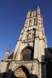 Catedral del santo Baaf Foto de archivo