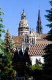 Catedral del santo Elizabeth, Kosice, Eslovaquia fotos de archivo
