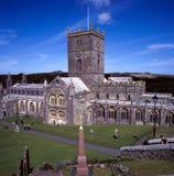 Catedral do St Davids Foto de Stock Royalty Free