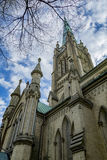 Catedral do St james Imagem de Stock Royalty Free