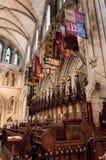 Catedral do St Patricks em Dublin, Ireland fotos de stock royalty free
