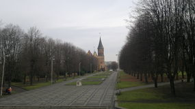 Catedral em Kaliningrad Fotografia de Stock Royalty Free