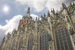 Catedral en la guarida Bosch. Imagen de archivo libre de regalías