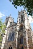 Catedral gótica en York, Reino Unido Foto de archivo