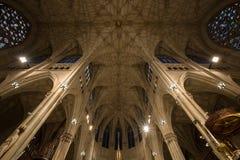 Catedral Manhattan do ` s de St Patrick Foto de Stock Royalty Free