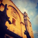 Catedral. In Mexico Stock Photos