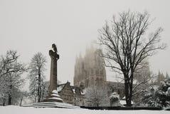 Catedral nacional na neve imagens de stock royalty free