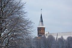Catedral no inverno Fotos de Stock