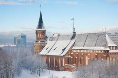 Catedral no inverno Foto de Stock
