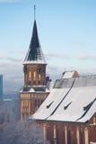Catedral no inverno Imagens de Stock