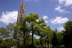 Catedral no parque fotografia de stock