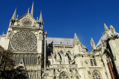 Catedral Notre Dame de Paris Foto de Stock Royalty Free